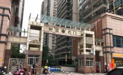 便宜楼王:财富名门、电梯一字东头房,256平方、豪华装修少住,9000元/方