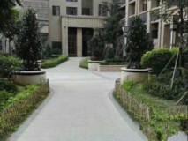 金碧花园楼王 4室 2厅 2卫